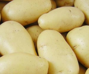 Is potato healthy?